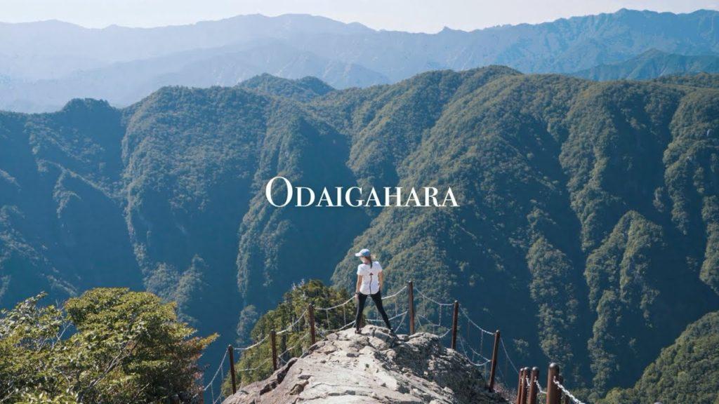 Solo travelling Odaigahara | Nara, Japan | Day trip from Osaka